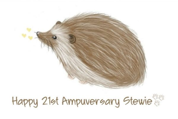 Super Stu! - Stewies Journey as our Tripawd Hero!